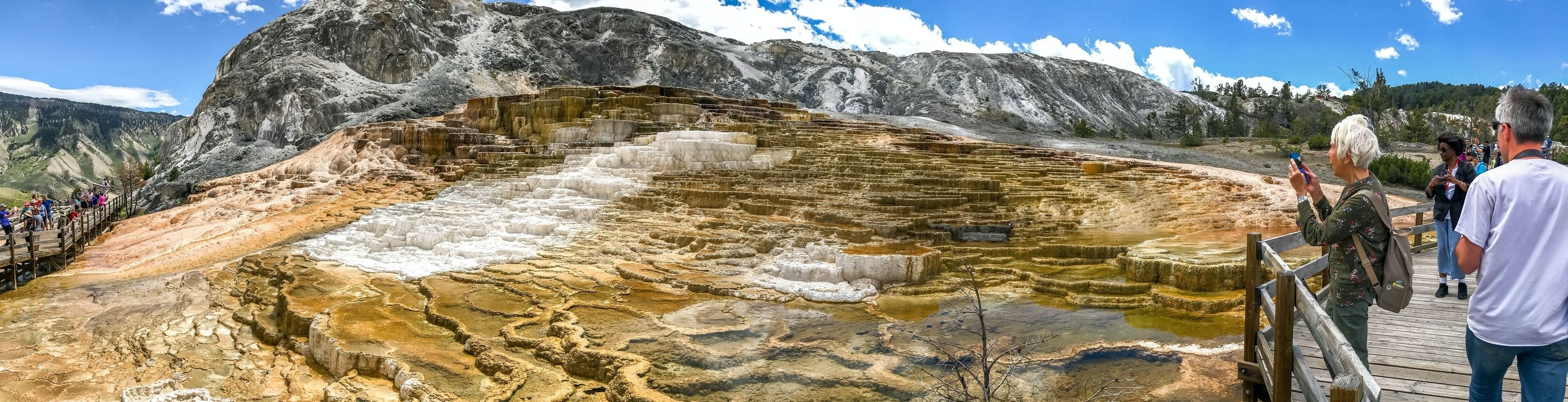 Mammoth Hot Springs w Parku Yellowstone