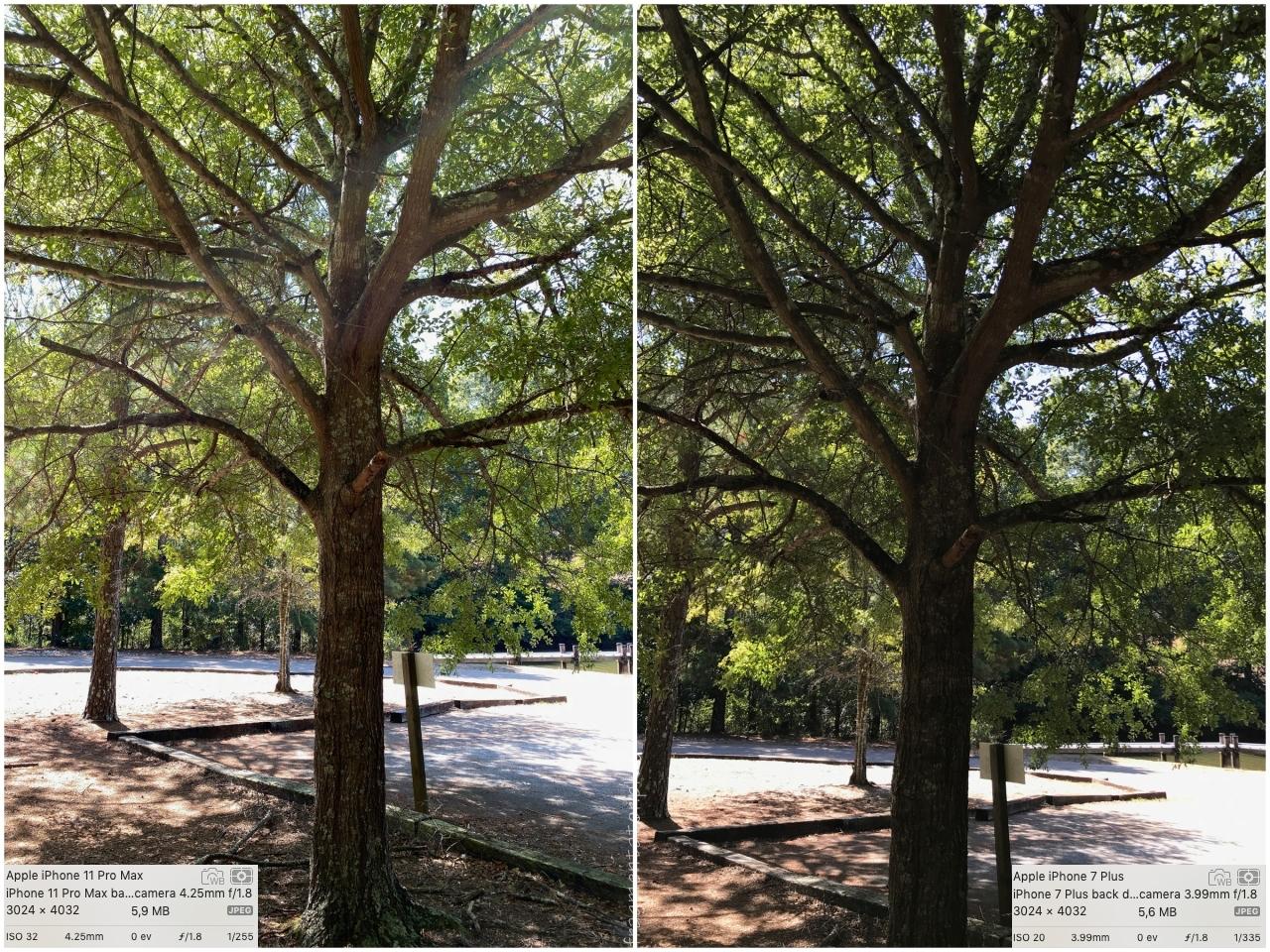 przykładowe zdjęcia iPhone 11 Pro Max photo 03
